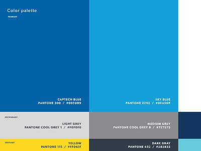 Color Palette styleguide pantone colors