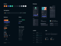SOM Elements webapp learn animation school of motion som fields dark widgets modules styles colors text buttons components kit ux uiux ui learning platform
