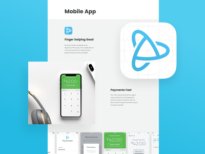 PayJunction iOS pos payment processing payment grid design icon iphone app ios payjunction