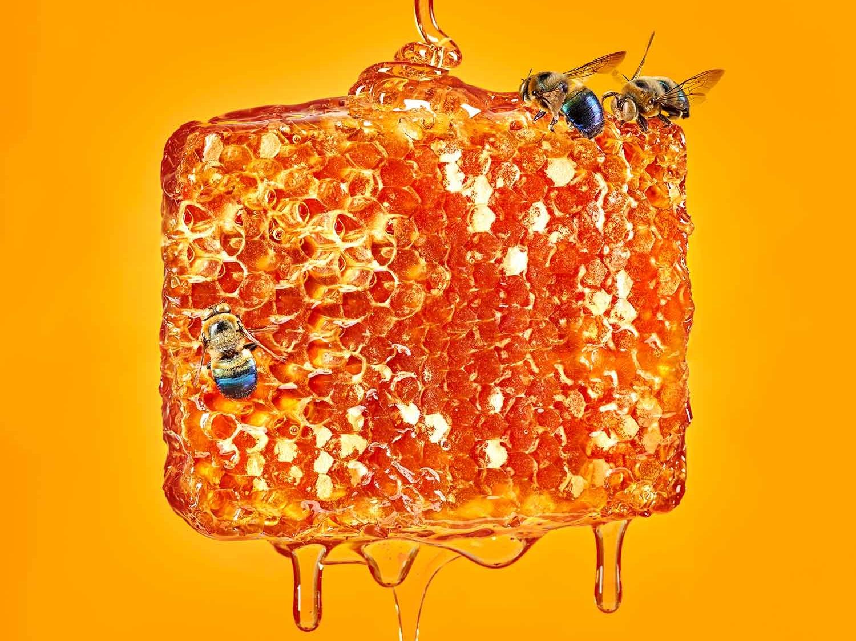 Color Series: Yellow surreal gold orange yellow drip bee hive bees honeybee honeycomb honey food and beverage food stylist food photographer food and drink food styling food food photography