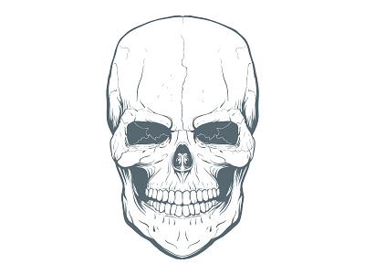 WIP Freehand Skull Illustration vector skull wip
