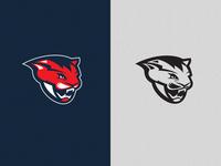 Sports Team Logo Study