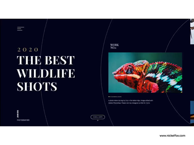 Wildlife Shot Animation typography clean photography userinterface website uiux web app visual design minimal uxdesign uidesign animation ux ui colors wildlife
