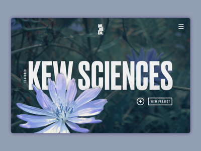 Banner Area Concept kew gardens sans serif splash page concept typography portfolio