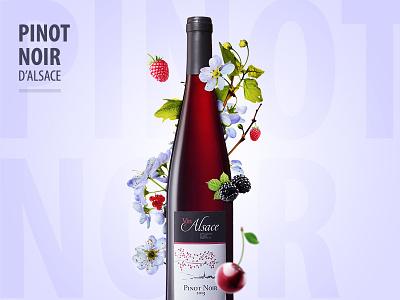 Pinot Noir d'Alsace colors wine graphic design illustration
