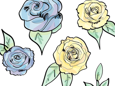 Flowers yellow blue illustration illustrator marker floral flowers watercolor