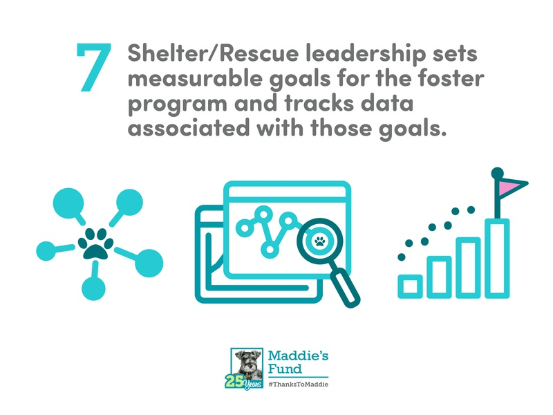 Maddie's Fund - 7th Guiding Principle for Foster Programs foster care goals tracking data cat dog paw icons rescue shelter animal illustration infographic