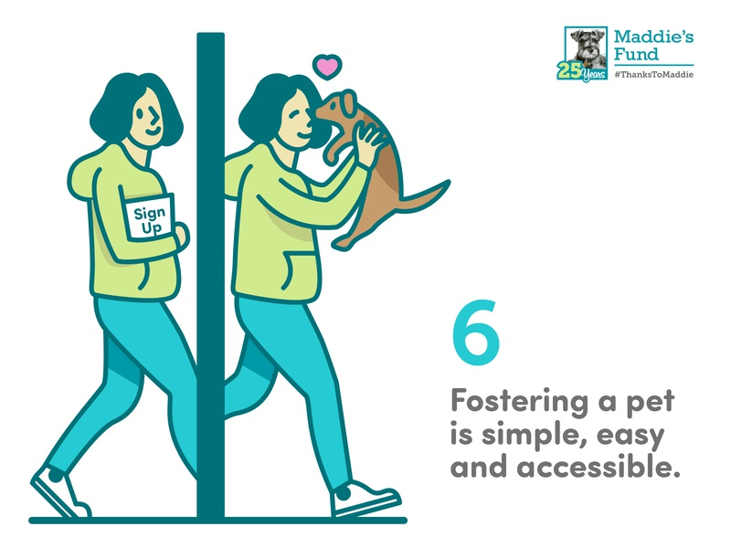 Maddie's Fund - 6th Guiding Principle for Foster Programs woman dog love sign up accessible easy simple foster care icons rescue shelter animal illustration infographic