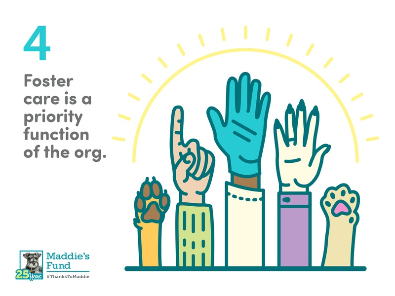 Maddie's Fund - 4th Guiding Principle for Foster Programs sun foster care veterinarian surgeon doctor hands paw icons rescue shelter animal illustration infographic