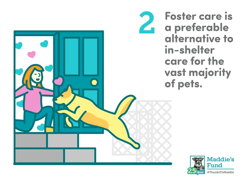 Maddie's Fund - 2nd Guiding Principle for Foster Programs foster care open arms open door cage redhead woman golden retriever dog icons rescue shelter animal illustration infographic