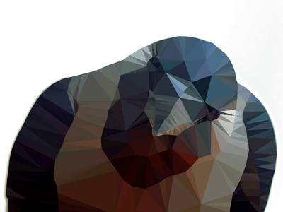 Crow lowpoly