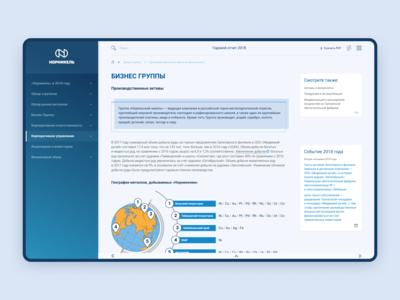 Nornickel Annual Report