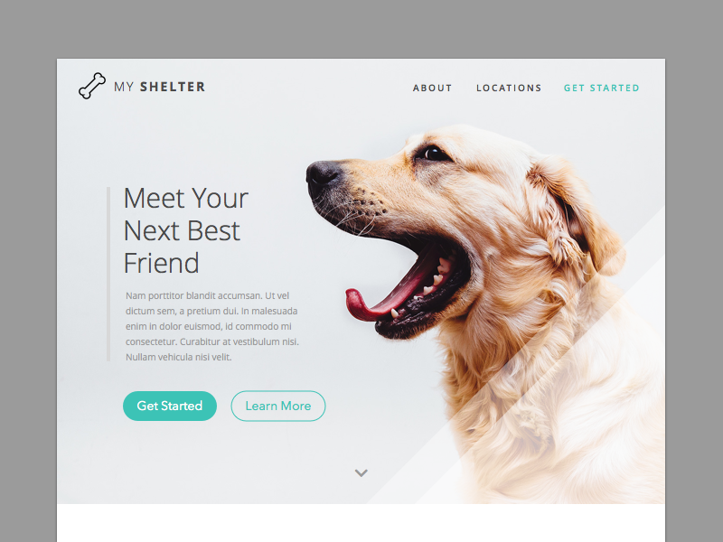 Landing Page (Above the fold) - Daily UI #003 shelter dogs web design 003 website ux ui landing landing page dailyui