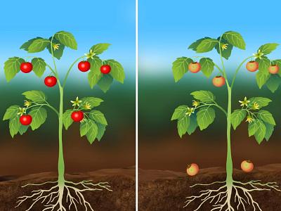 Product Illustration graphic design background design vector illustration