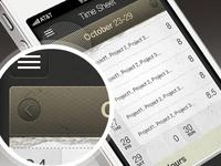 Time Entry iOS Application UI