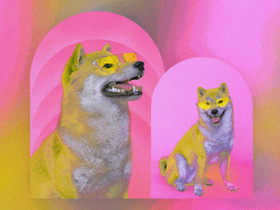 Doge Illustrations cryptocurrency bitcoin dogecoin