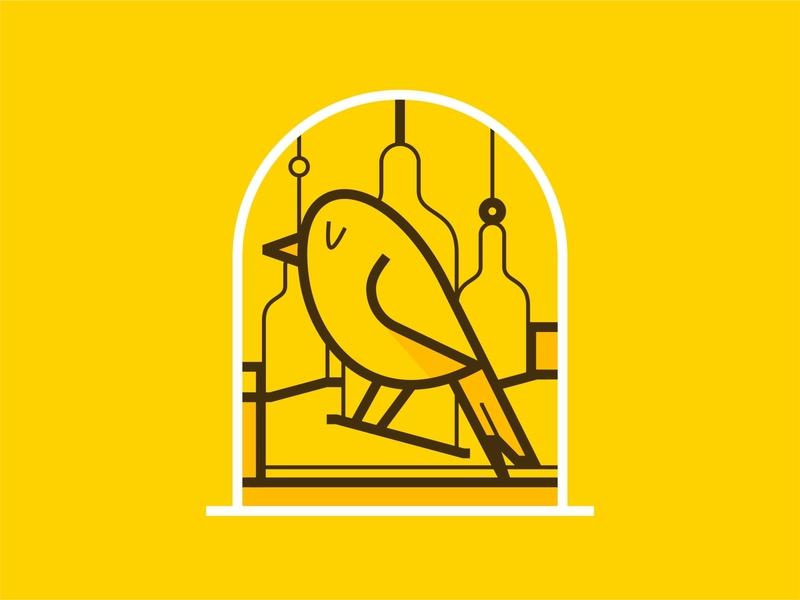 Home Bird 🐤🏡 stayathome cute love house lockdown quarantine indore home alone home cage bird pet pets virus medicine medical doctors covid corona