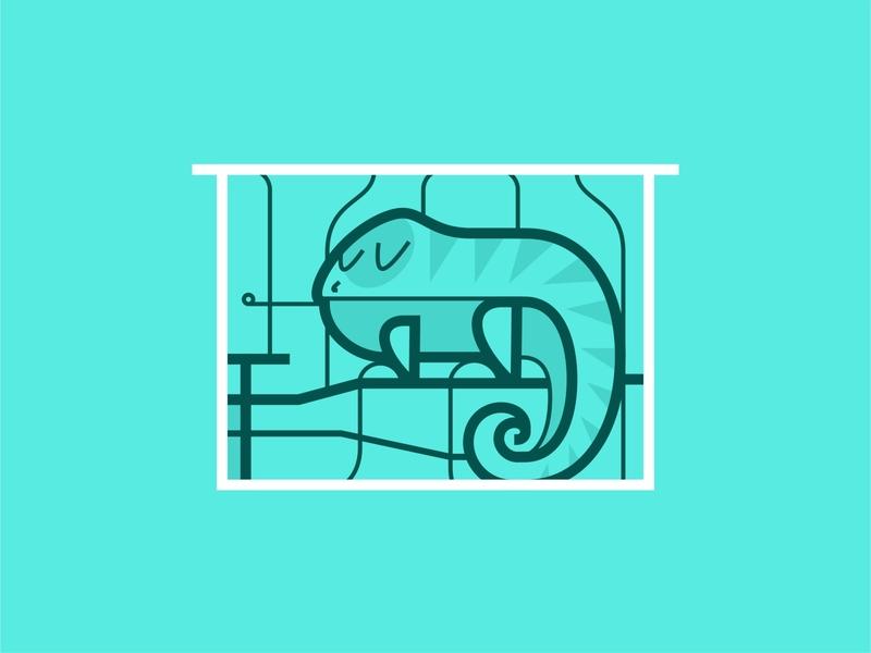 Home Iguana   🏠🦎