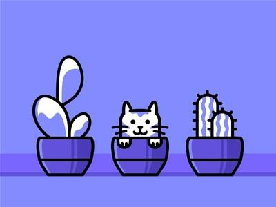 Cactus cat 🐱
