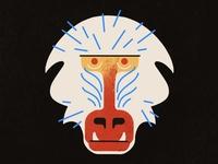 Baboon 🐒