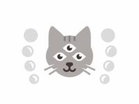 Cat 👁👁👁