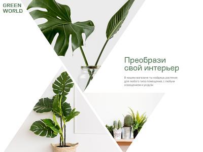 Интернет-магазин комнатных растений photoshop figma tilda ux ui website web minimal typography landing page design