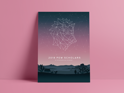 Javelina poly geometric geo landscape constellation illustration poster arizona javelina pig