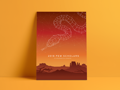 Kingsnake poly geometric geo landscape constellation illustration poster arizona kingsnake snake