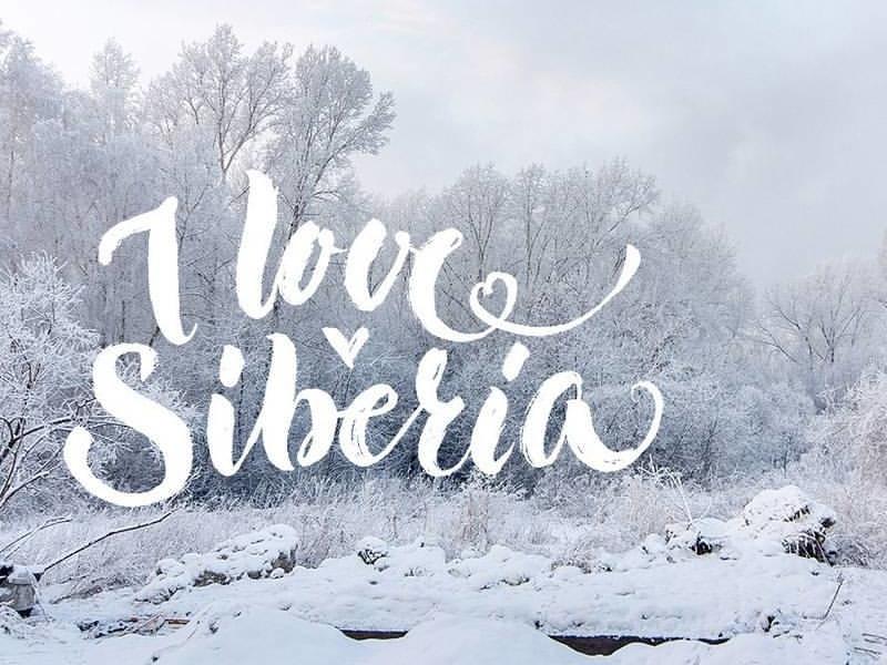 I love Siberia handwritting brushcalligraphy brushlettering brush calligraphy handlettering lettering siberia