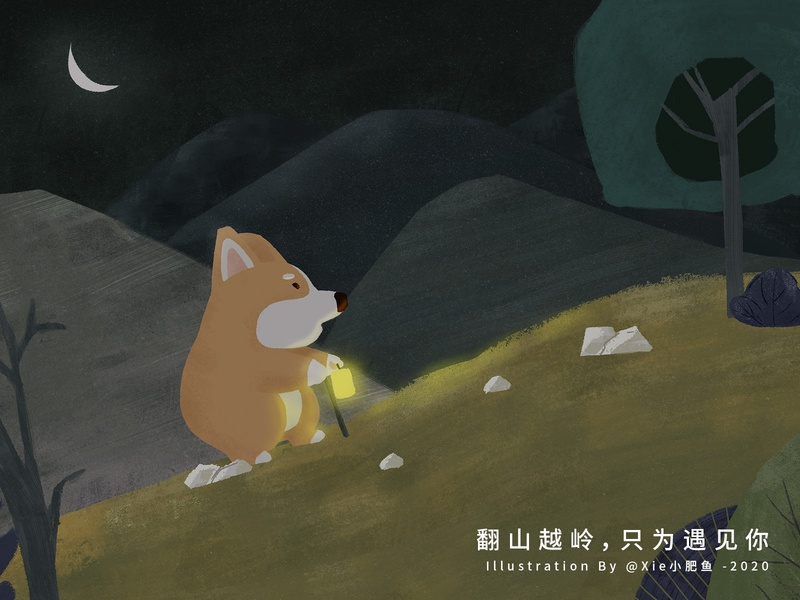 Story of Corgi looking for owner
