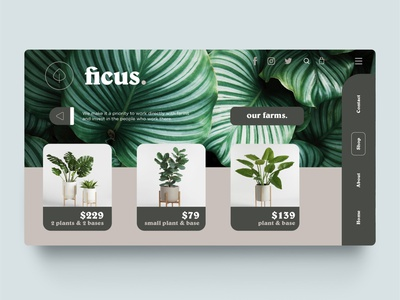 Ficus. -  Shop website ficus ecommerce webdesign design ui web shop plant plants nature