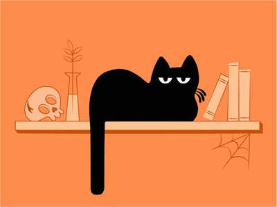 cat typography branding brand logo vector animation motiongraphics motion motion design illustration minimal design adobe