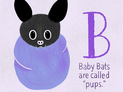 Baby Bat cute animals cute animal illustration art digital art digital illustration bat baby animals