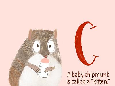 Chipmunk chipmunk childrens book childrens illustration illustration baby animals