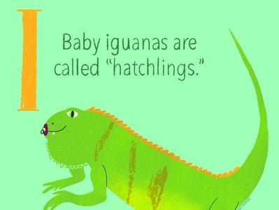 Iguana Baby illustration digital illustration childrensbookillustration childrensbooks kids art illustratio baby animals