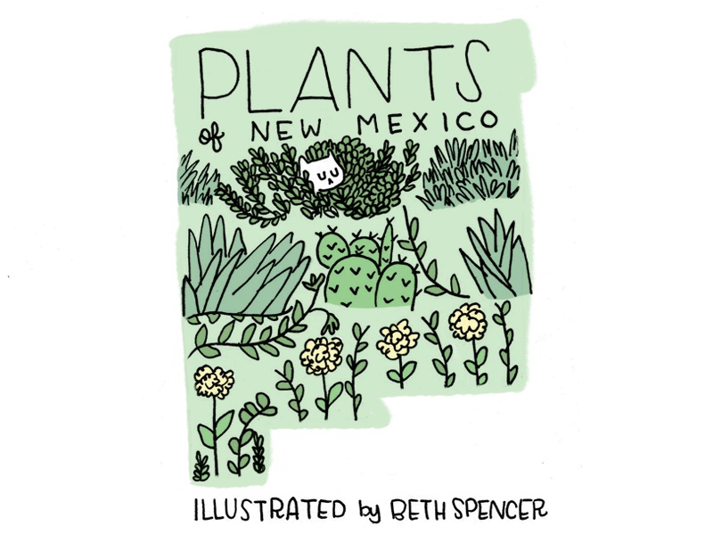 Plants of New Mexico Cover illustration zine new mexico plants