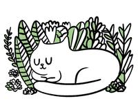 Get Planty of Sleep Kitty