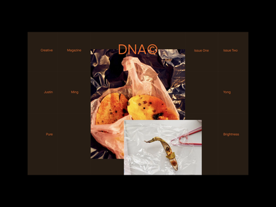 DNA© Mag Concept Site ux typography design ui art branding site figma animation web landing page
