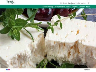 Tempi - Greek Dairy Products web development web design