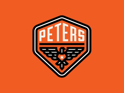 Peters Design Co Eagle Badge logo american america monoweight thicklines crest badge pdco peters eagle