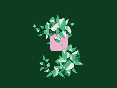 Plant Sit Pothos pothos plant leaves vector illustrator geometric flat illustration design
