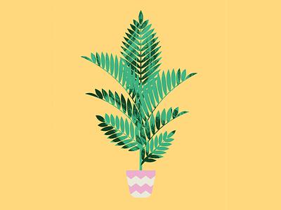 Plant Sit Palm palm plant leaves vector illustrator geometric flat illustration design