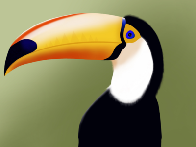 Digital art procreate - Toucan bird drawing...