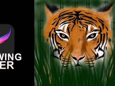 Realistic digital art... Tiger drawing...