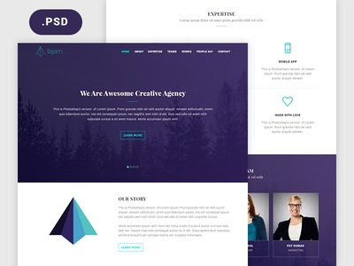 Agency Website PSD