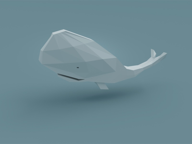 Poly Whale whale render poly low isometric illustration cute blender b3d