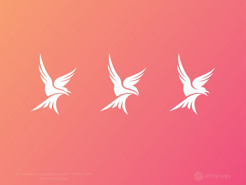 Bird Logo for Sale logo design bird bird logo ready made logo premade logo logoground unused logo logoforsale vector symbol morden logotype logodesign icon logo illustration design branding