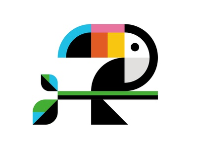 Toucan wilkins ty austin rainforest illustration bird toucan