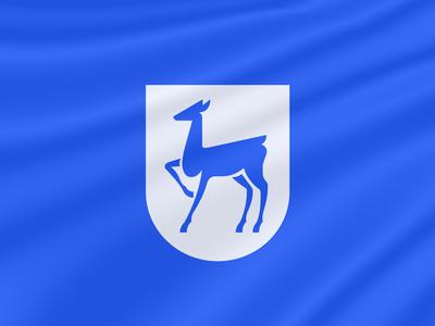 Lan logo design logotype branding design identity branding icon illustration logo design nimax