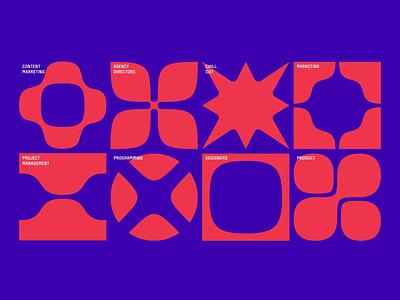 Specia rebranding logo illustration animation branding design nimax
